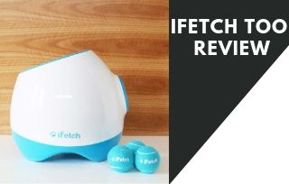 Ifetch too, Interactive dog toy review