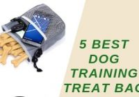 Top 5 Best Dog Training Treat Bag-Buying Guide & Review