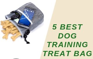 Best dog training treat bag