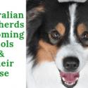 Australian Shepherds Grooming Tools