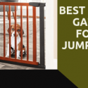 dog gate for jumper dog