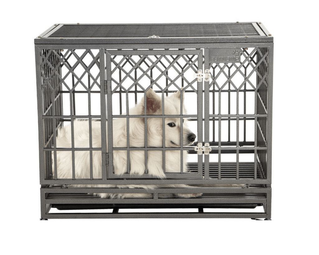 Dog crate for separation anxiety