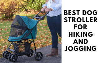 Womens with dog stroller
