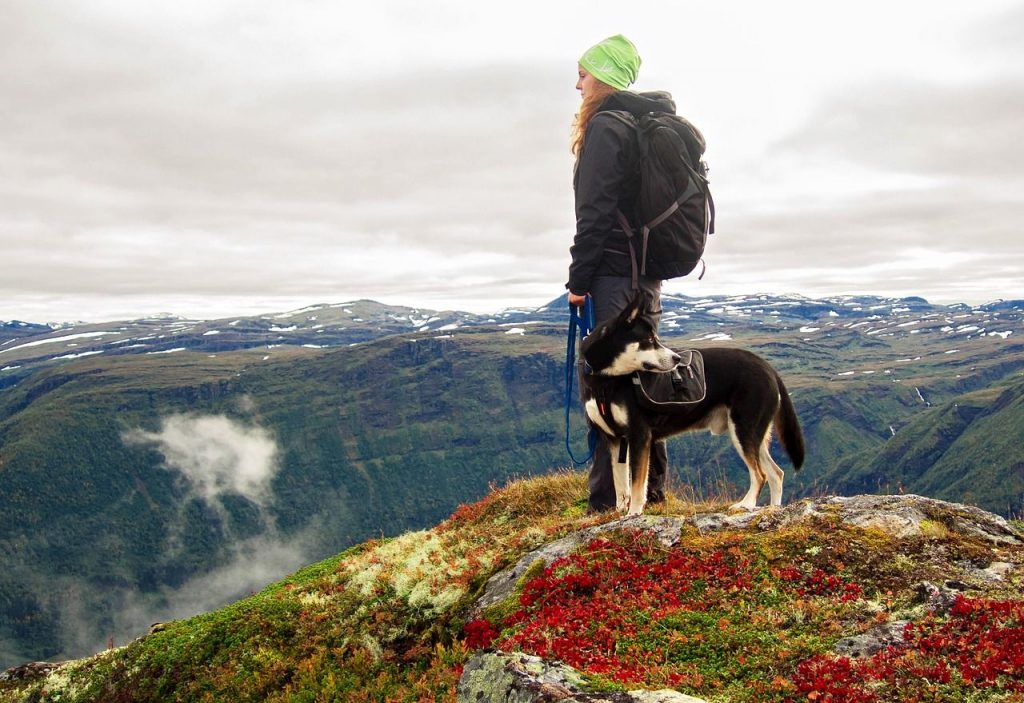 Dog with women in mountain